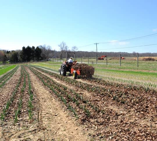 Spring Seeding: March at Quail Hill Farm: gallery image 18
