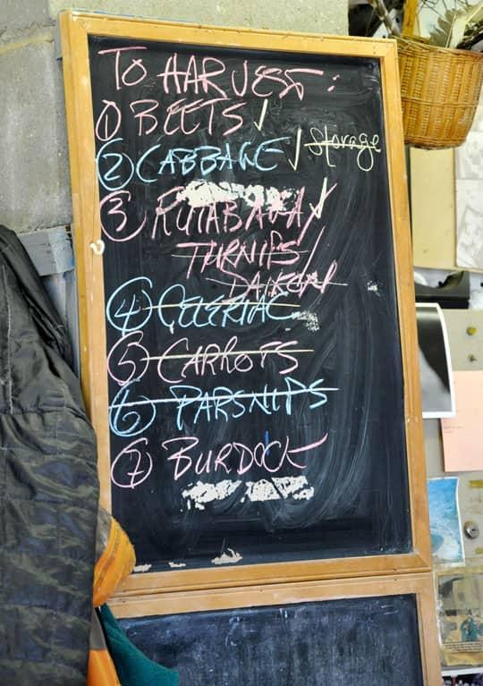 Spring Seeding: March at Quail Hill Farm: gallery image 2
