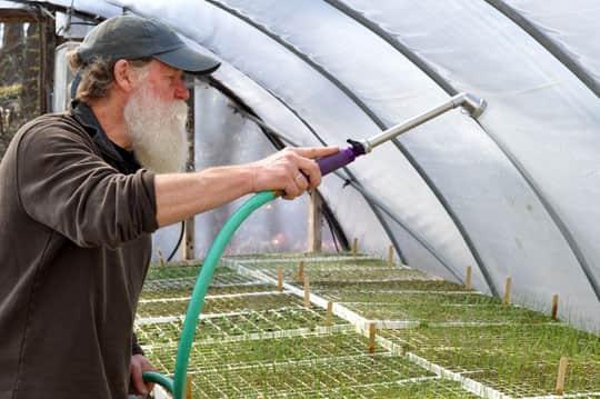Spring Seeding: March at Quail Hill Farm: gallery image 20