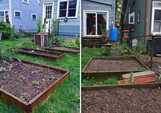 Rachel & Alex's Urban Homestead with Hounds, Chicken, & Handmade Kitchen: gallery image 1