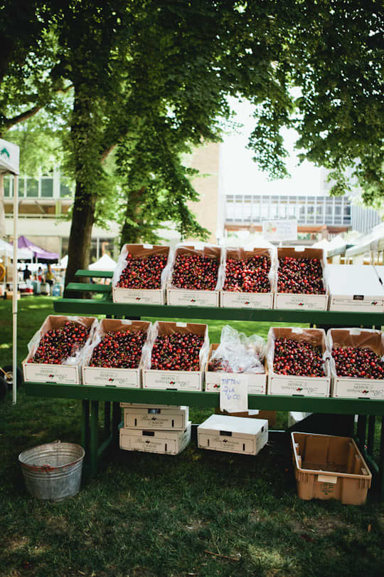 Farmer's Market Report: Portland, Oregon: gallery image 6