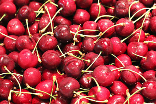 Perfect Cherries: Their Journey From the Farm (and 3 Tips for Buying Them): gallery image 5