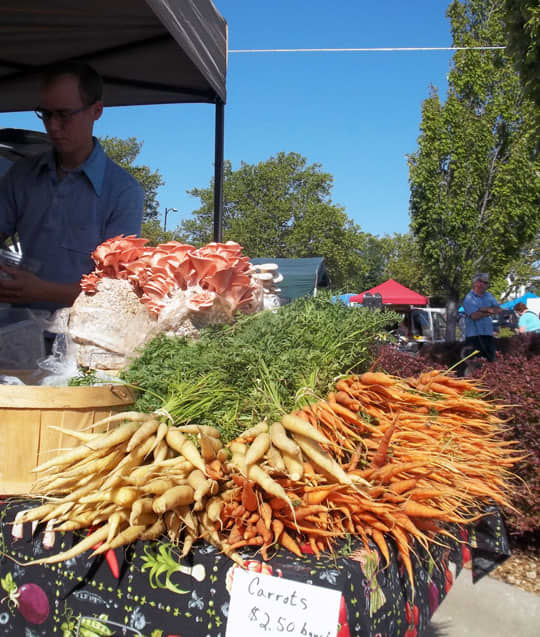 The Downtown Lawrence Farmers' Market: gallery image 6
