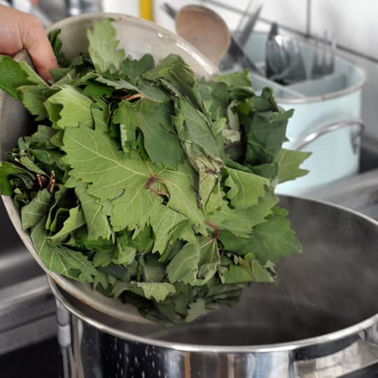 How To Make Stuffed Grape Leaves (Dolmades): gallery image 2