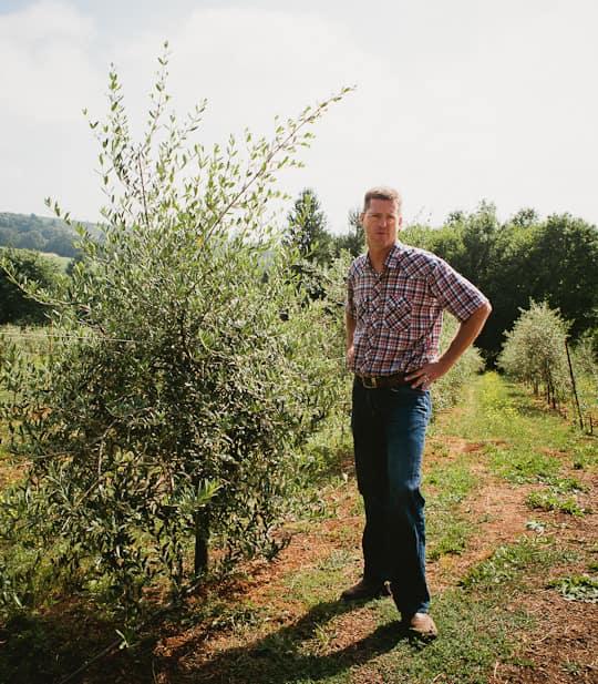 A Visit to Oregon Olive Mill: Heritage Olive Oil From Dayton, Oregon: gallery image 1