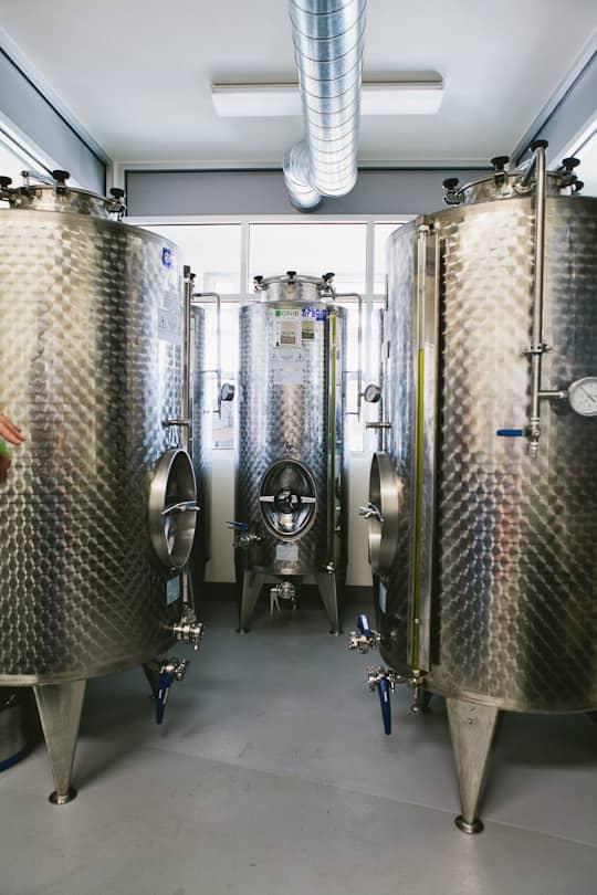 A Visit to Oregon Olive Mill: Heritage Olive Oil From Dayton, Oregon: gallery image 5