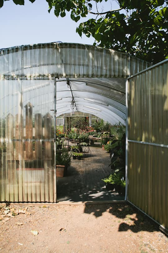 A Visit to Oregon Olive Mill: Heritage Olive Oil From Dayton, Oregon: gallery image 12