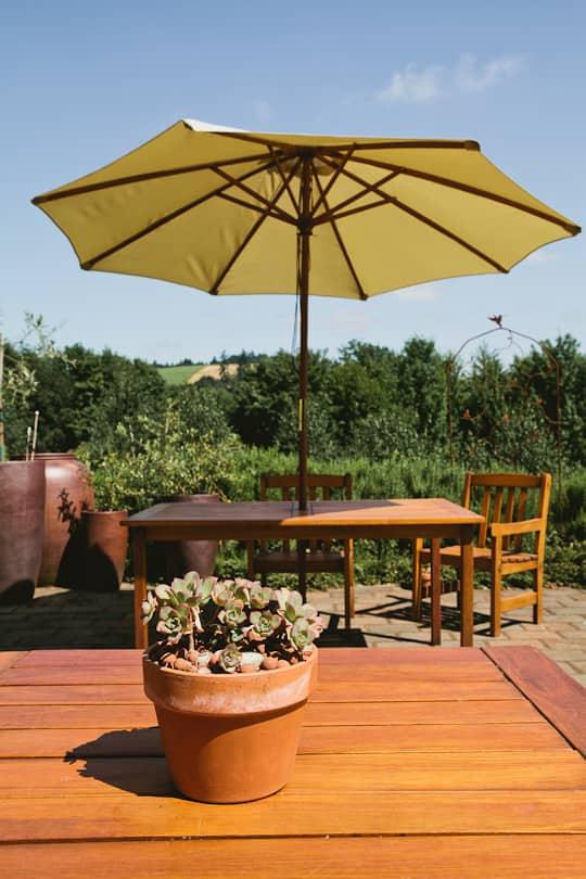 A Visit to Oregon Olive Mill: Heritage Olive Oil From Dayton, Oregon: gallery image 15