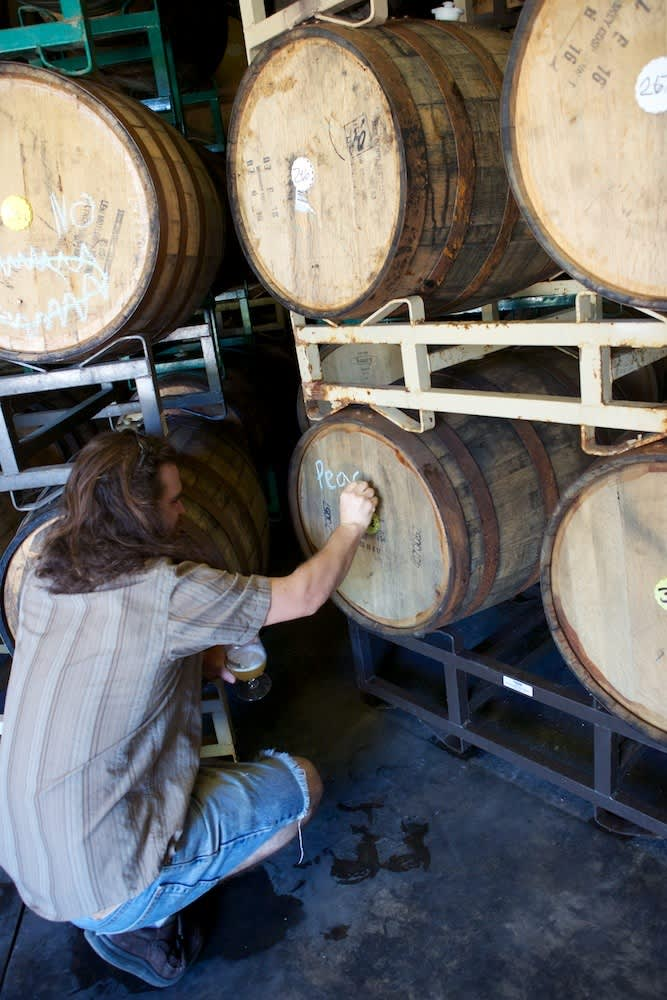A Visit to Jester King: Craft Beer in Austin: gallery image 14