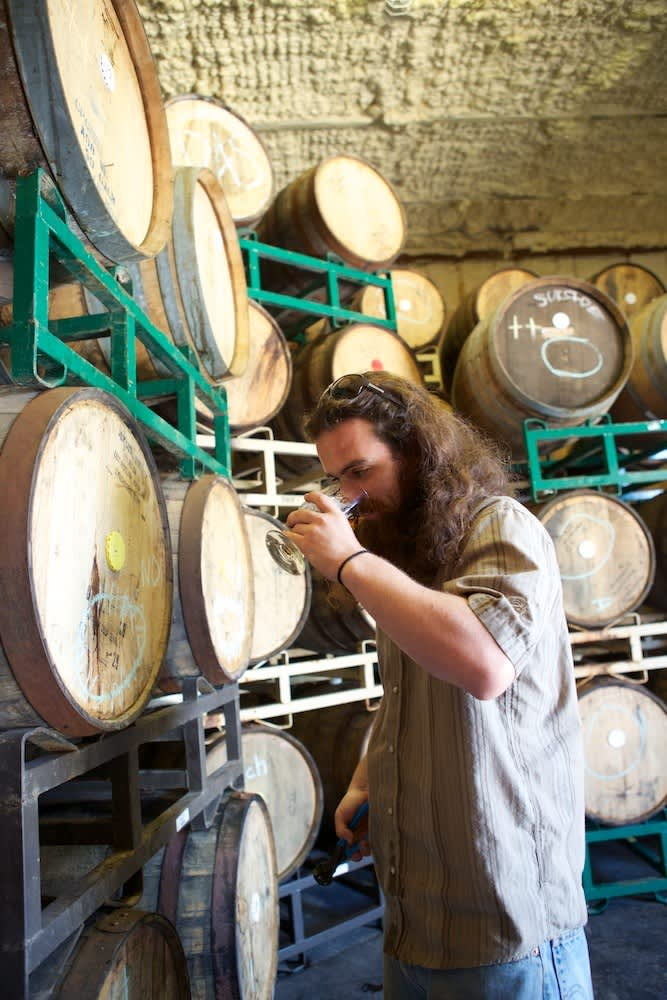 A Visit to Jester King: Craft Beer in Austin: gallery image 17