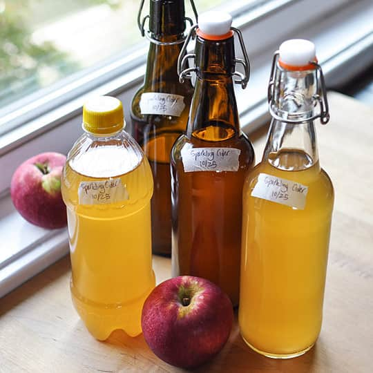 How To Make Sparkling Cider with Just 2 Ingredients: gallery image 9