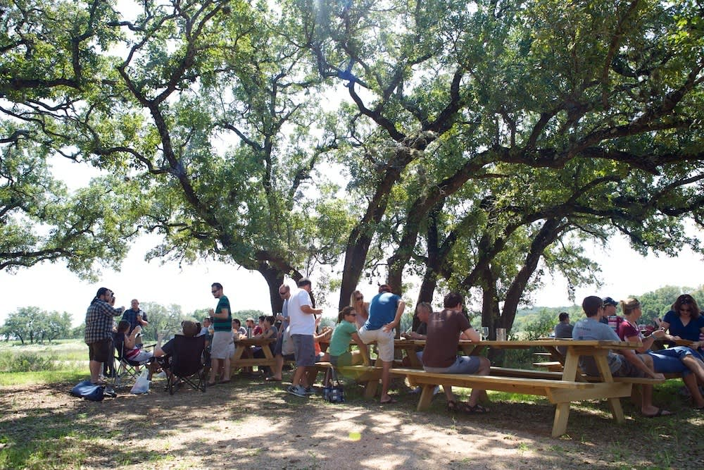 A Visit to Jester King: Craft Beer in Austin: gallery image 25