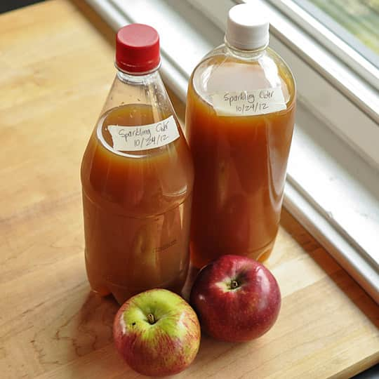 How To Make Sparkling Cider with Just 2 Ingredients: gallery image 8