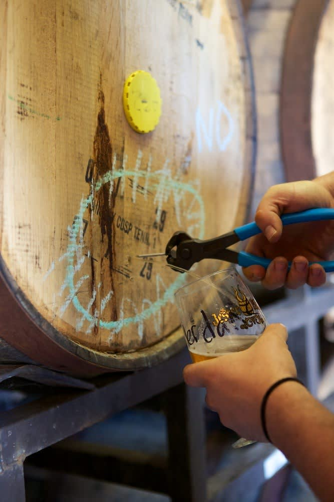 A Visit to Jester King: Craft Beer in Austin: gallery image 16