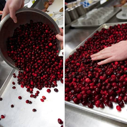 How To Make Cranberry Mustard for the Holidays: gallery image 3