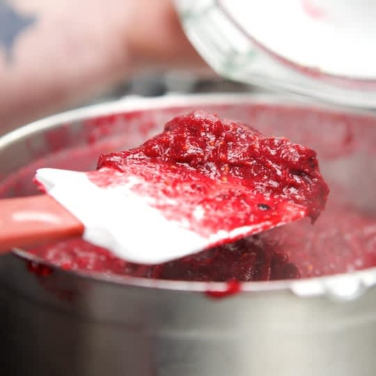 How To Make Cranberry Mustard for the Holidays: gallery image 14