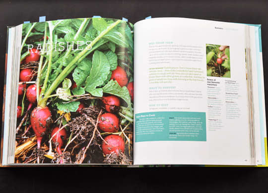 Sunset Edible Garden Cookbook: gallery image 2