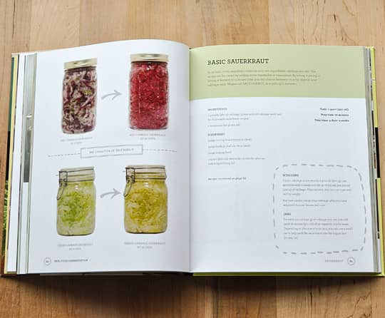 Real Food Fermentation by Alex Lewin: gallery image 3