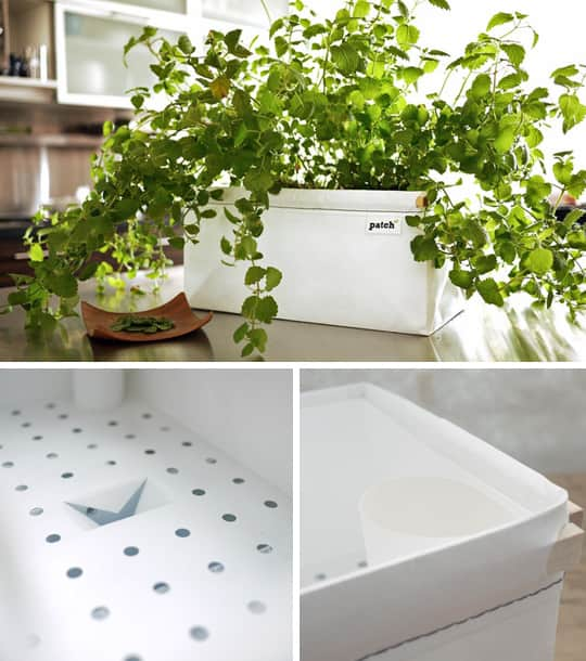 Patch Self Watering Herb Planters For Urban Cooks And Novice