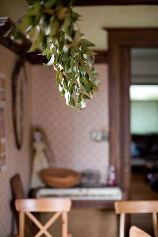 Lola's Homemade Orange Kitchen: gallery image 20