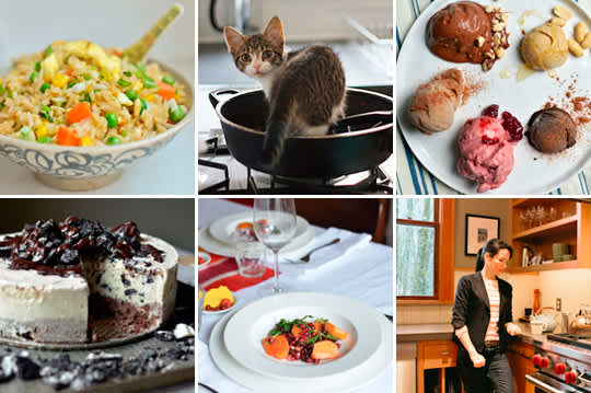 Cats in the Kitchen, Oreo Ice Cream Cake & Beginner's Guide to Stir Frying