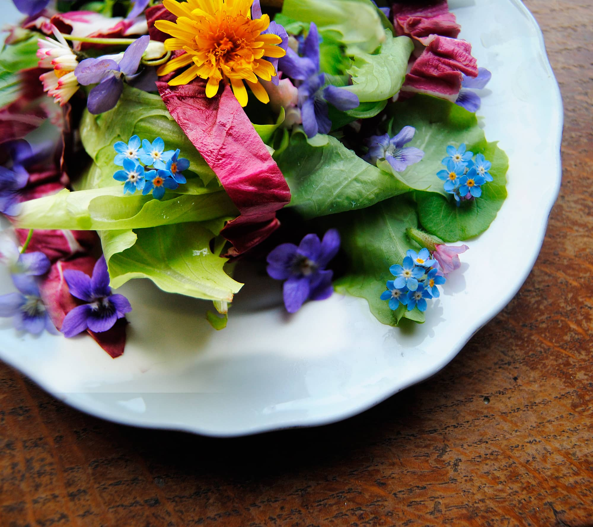 5 Flowers You Probably Didn't Know You Could Eat