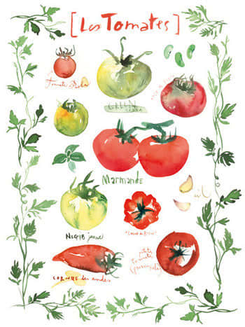For Your Kitchen Walls: Pretty Watercolor Prints by Lucile Prache: gallery image 8