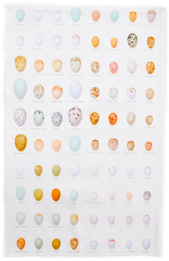 For the Chart-Obsessed: Shells and Eggs Tea Towels from Leif