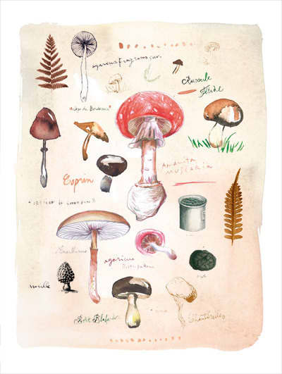 For Your Kitchen Walls: Pretty Watercolor Prints by Lucile Prache: gallery image 1