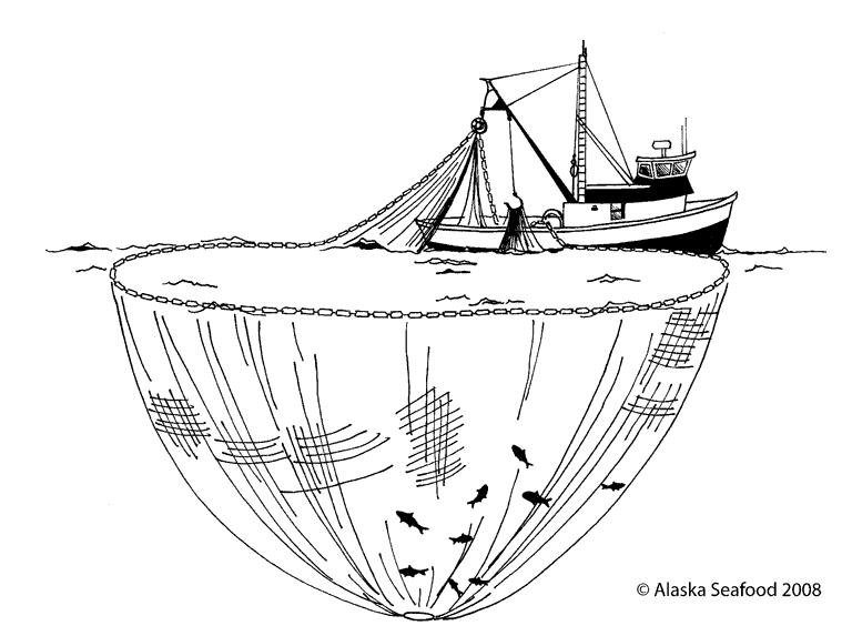 One Way to Catch Salmon In Alaska: Onboard the Purse Seine Owyee