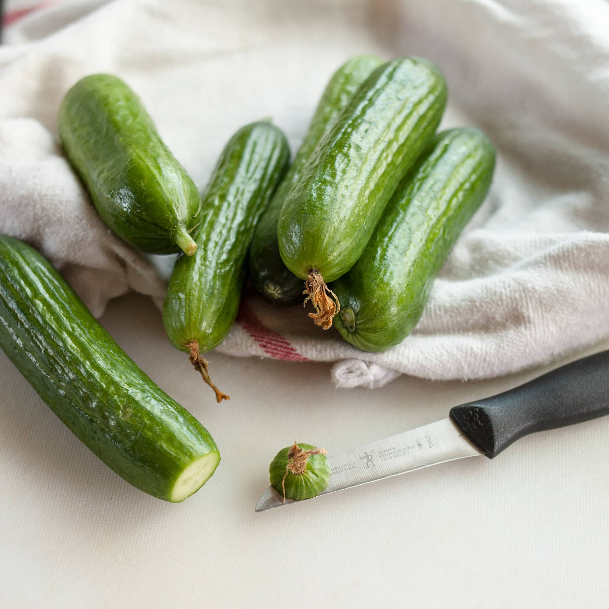 How To Make Dill Pickles: gallery image 2