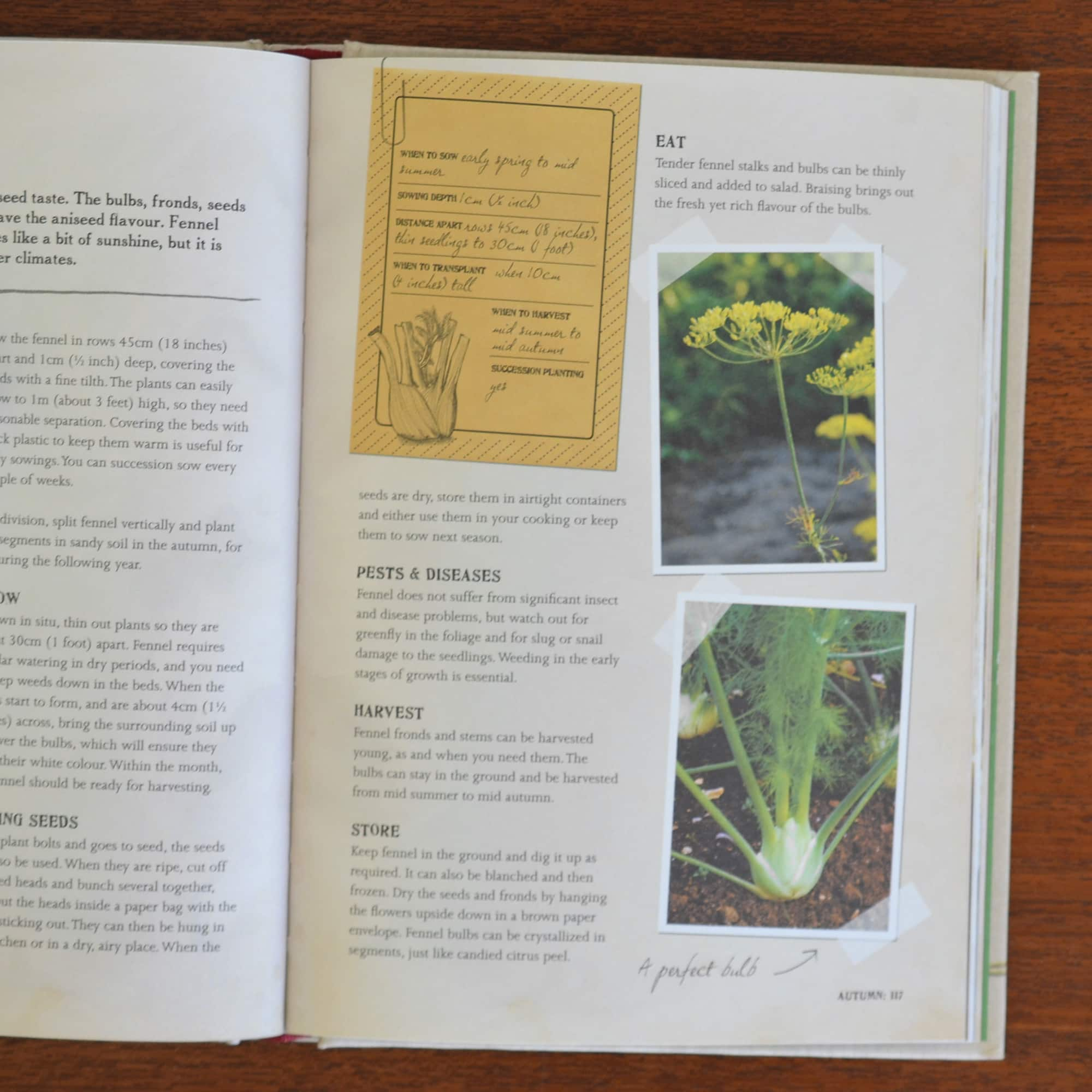 Made At Home: Vegetables by Dick and James Strawbridge: gallery image 5