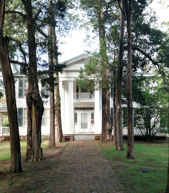 What I Learned from Visiting William Faulkner's Mississippi Kitchen: gallery image 16