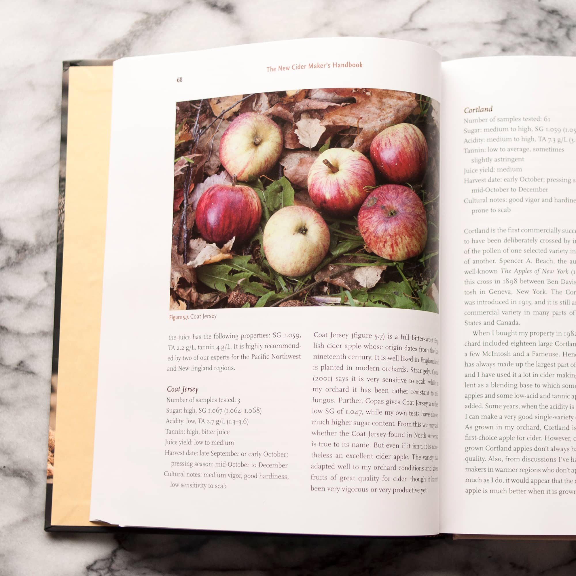 The New Cider Maker's Handbook by Claude Jolicoeur: gallery image 2