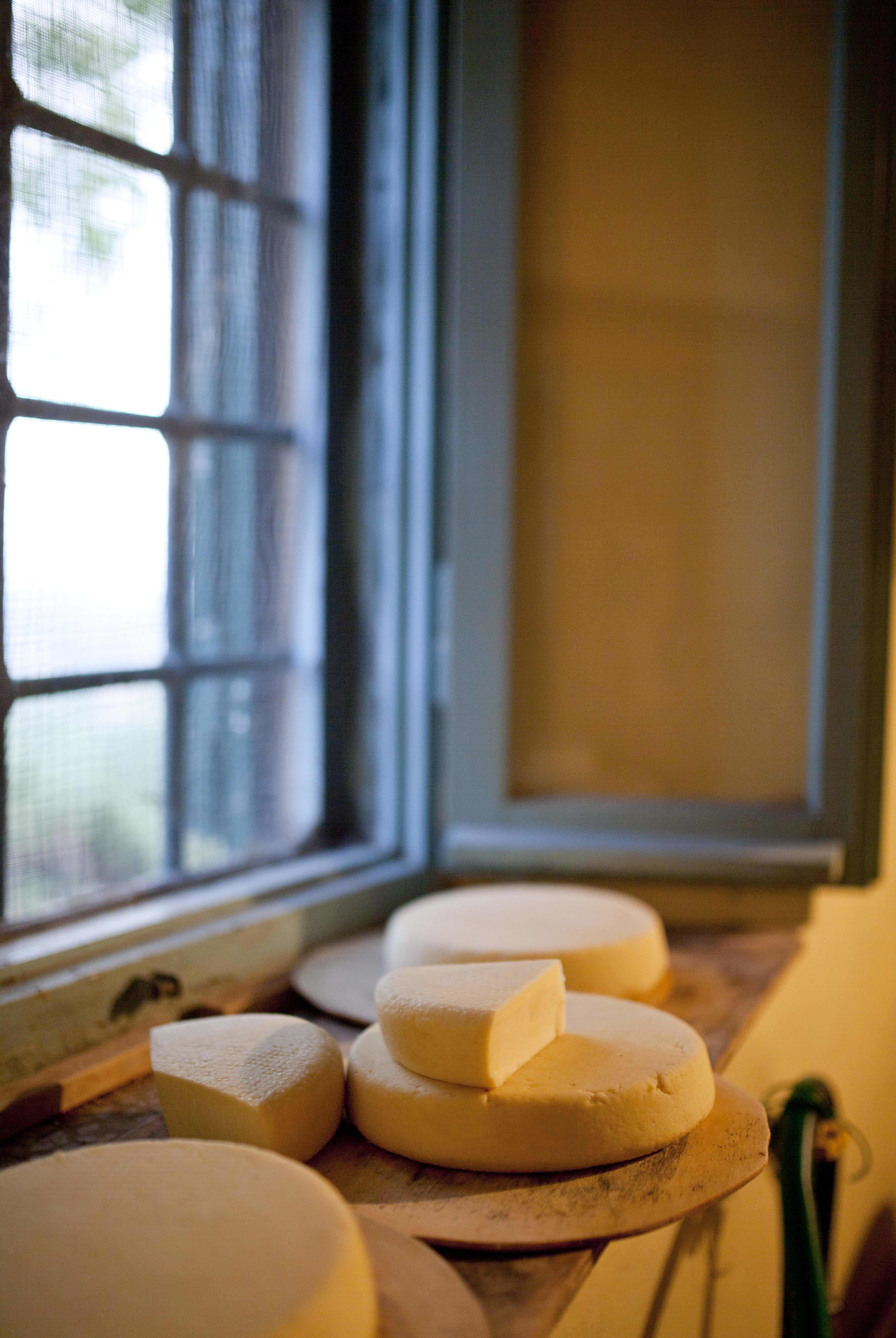 A Visit With a Cheesemaker in Tuscany: Francesco of I Due Falcetti: gallery image 17