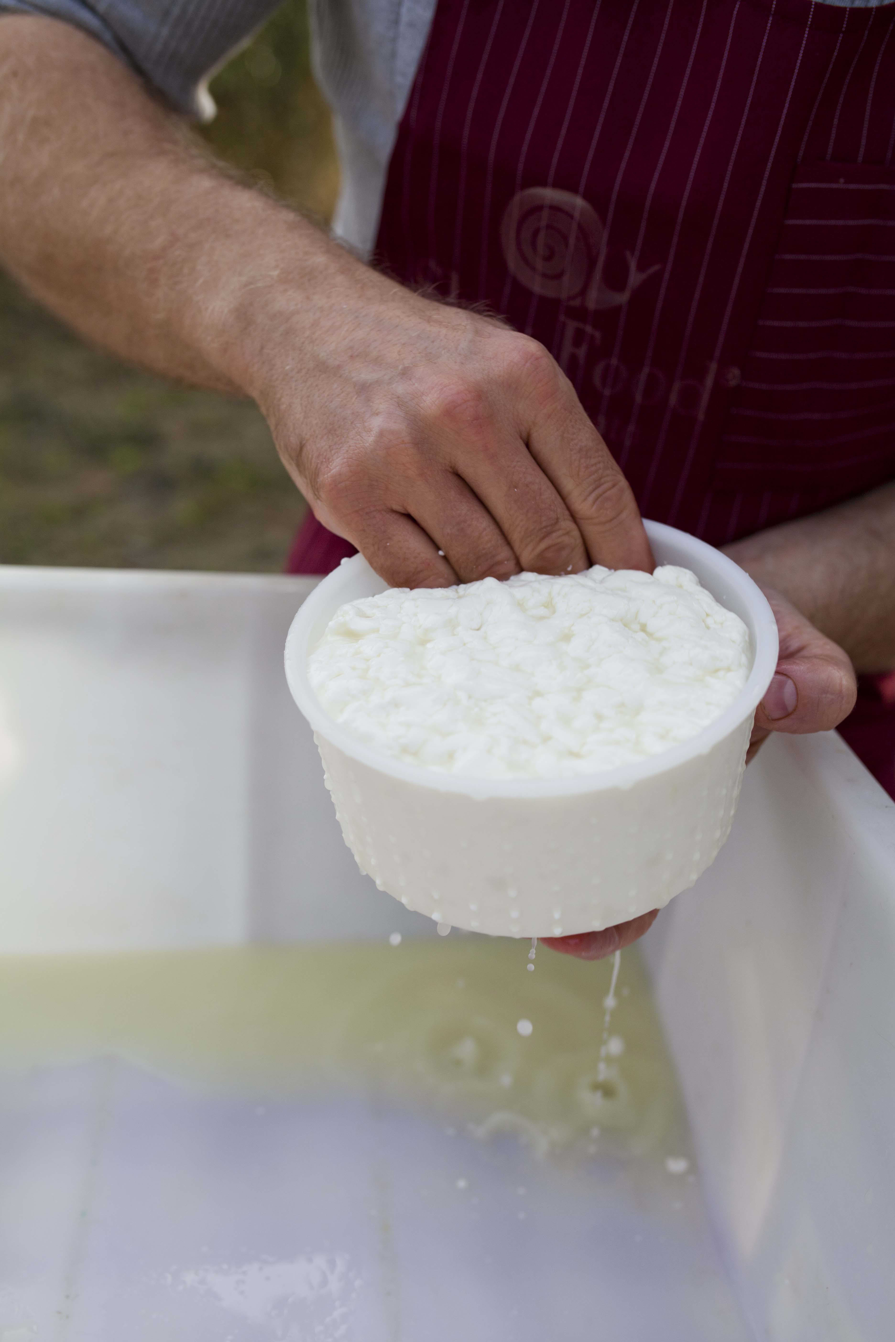 A Visit With a Cheesemaker in Tuscany: Francesco of I Due Falcetti: gallery image 7