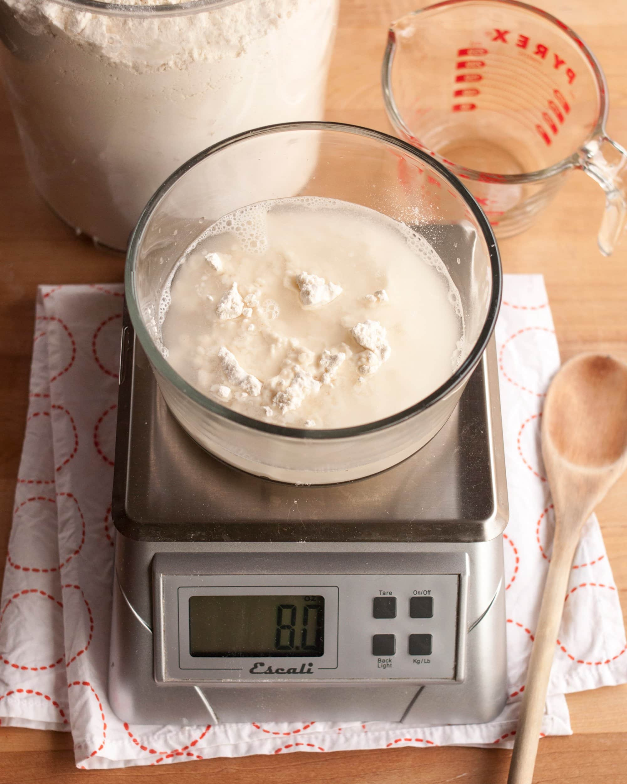 How To Make Sourdough Starter from Scratch: gallery image 3