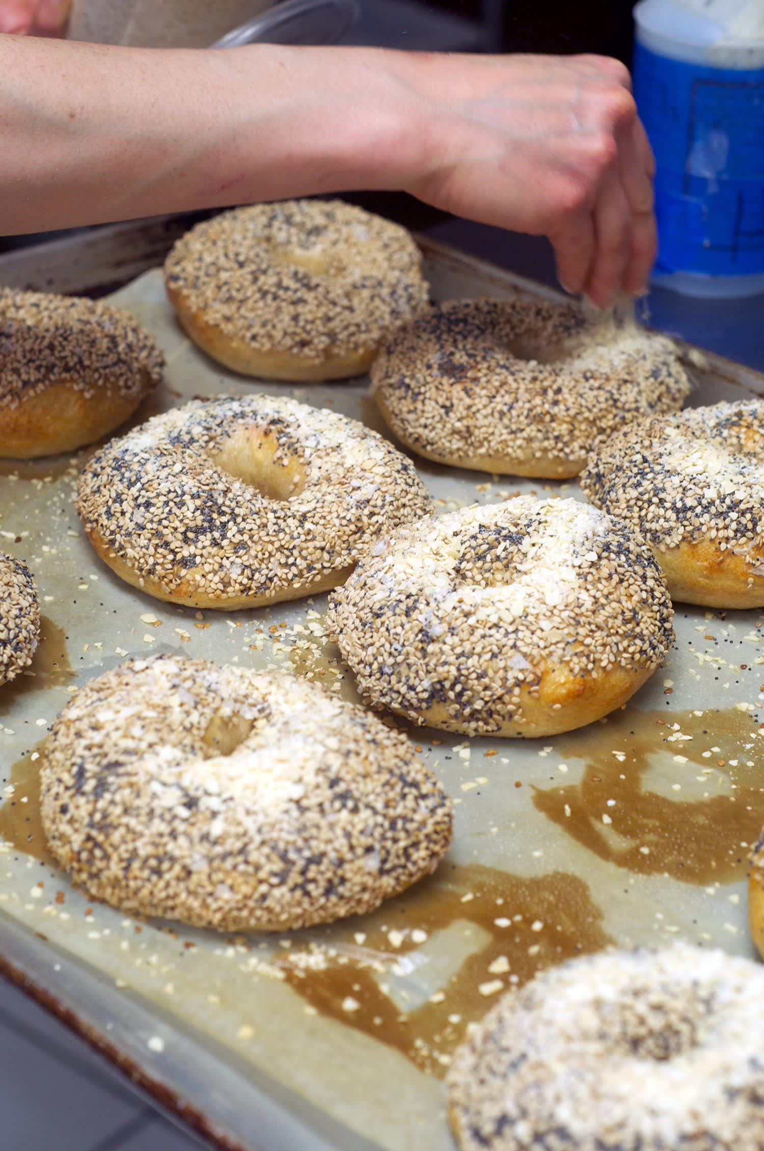 How Mary Ting Hyatt of Bagelsaurus Makes the Best Bagels in Boston: gallery image 24