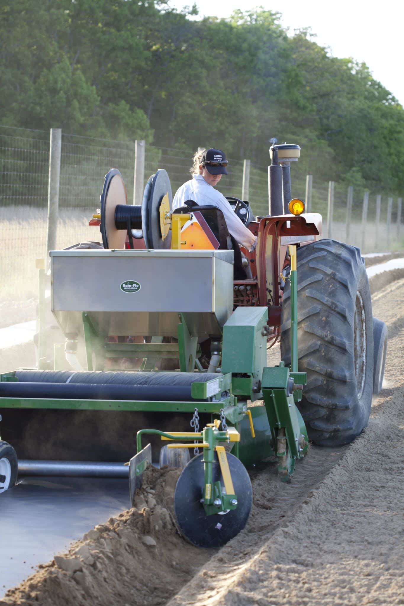 A Day in the Life of a Farm: gallery image 29