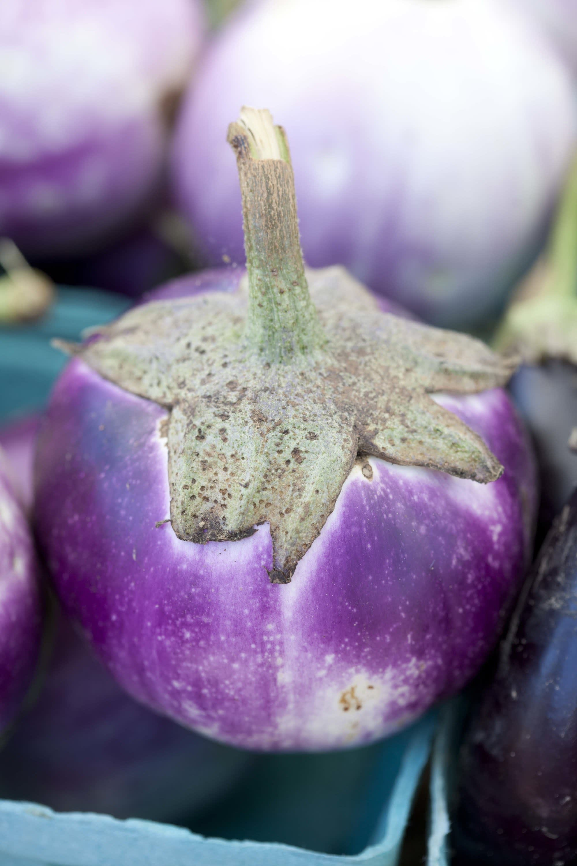 How Produce Gets from the Farm to a Farmers Market: gallery image 43