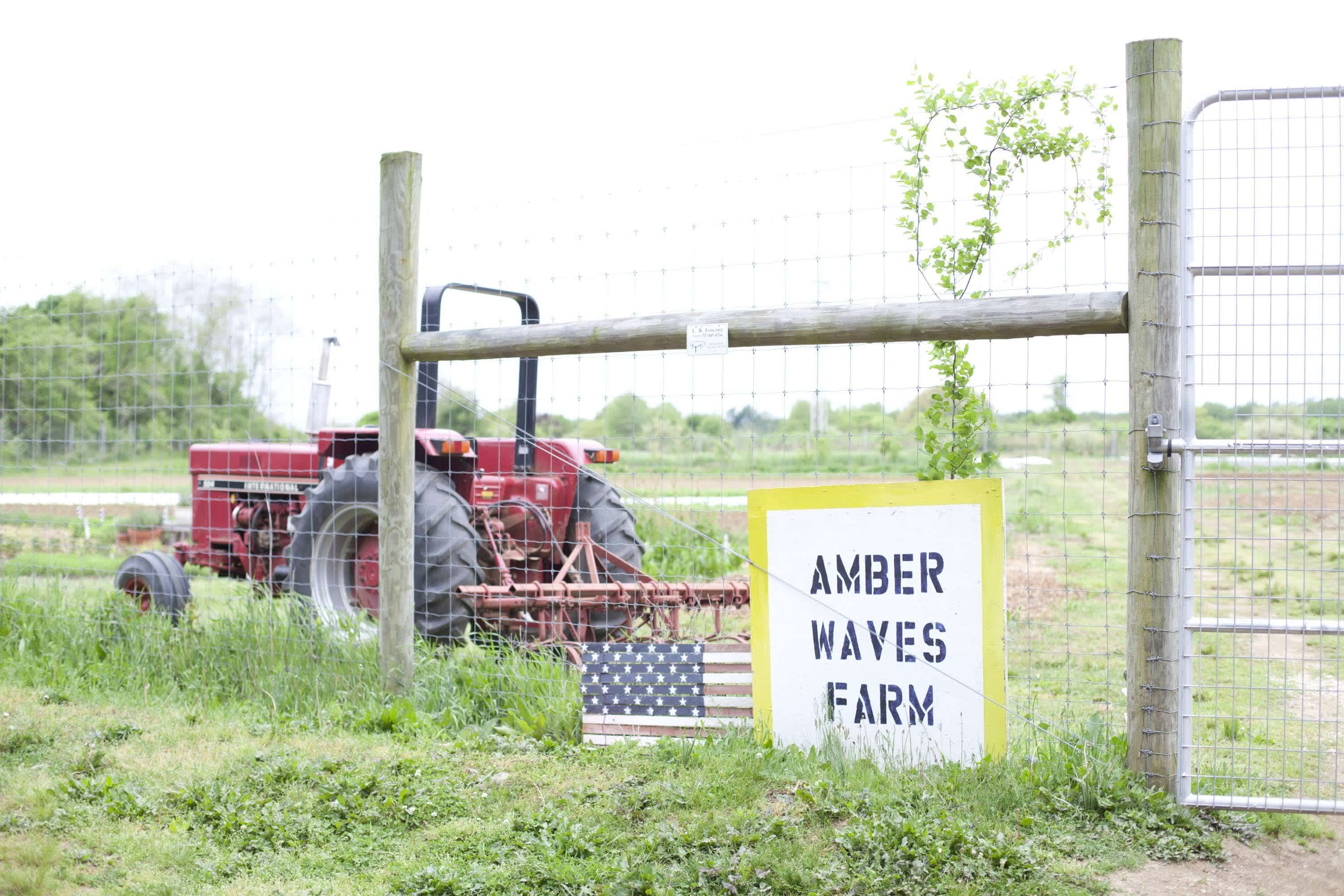 Why a Tractor Is So Indispensable to a Real Working Farm: gallery image 21