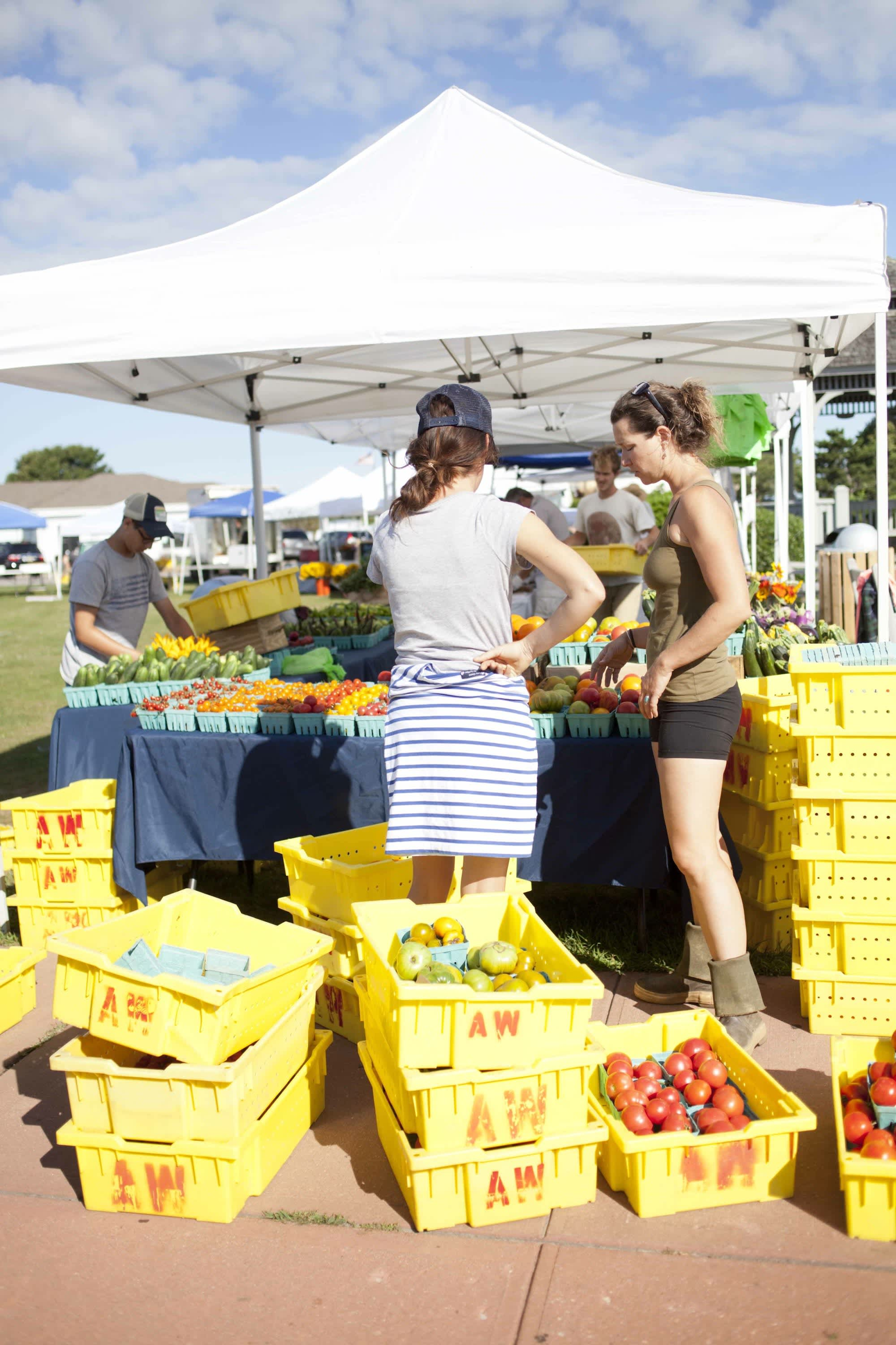 How Produce Gets from the Farm to a Farmers Market: gallery image 46