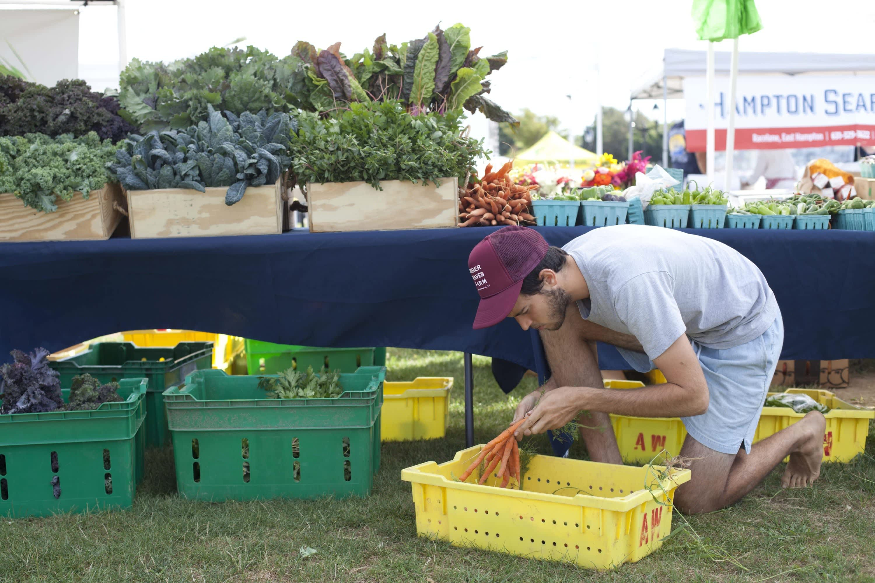 How Produce Gets from the Farm to a Farmers Market: gallery image 27