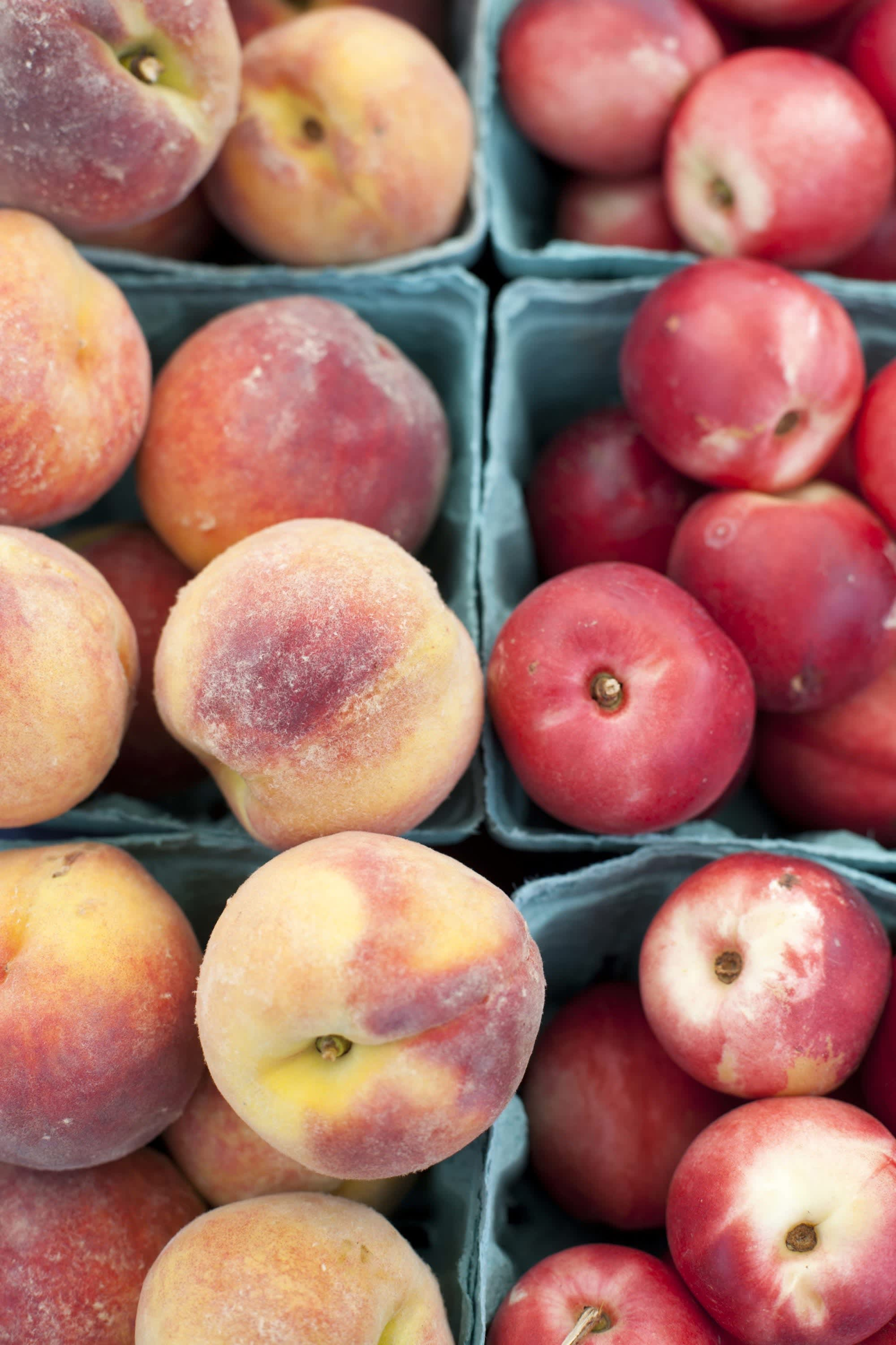 How Produce Gets from the Farm to a Farmers Market: gallery image 23