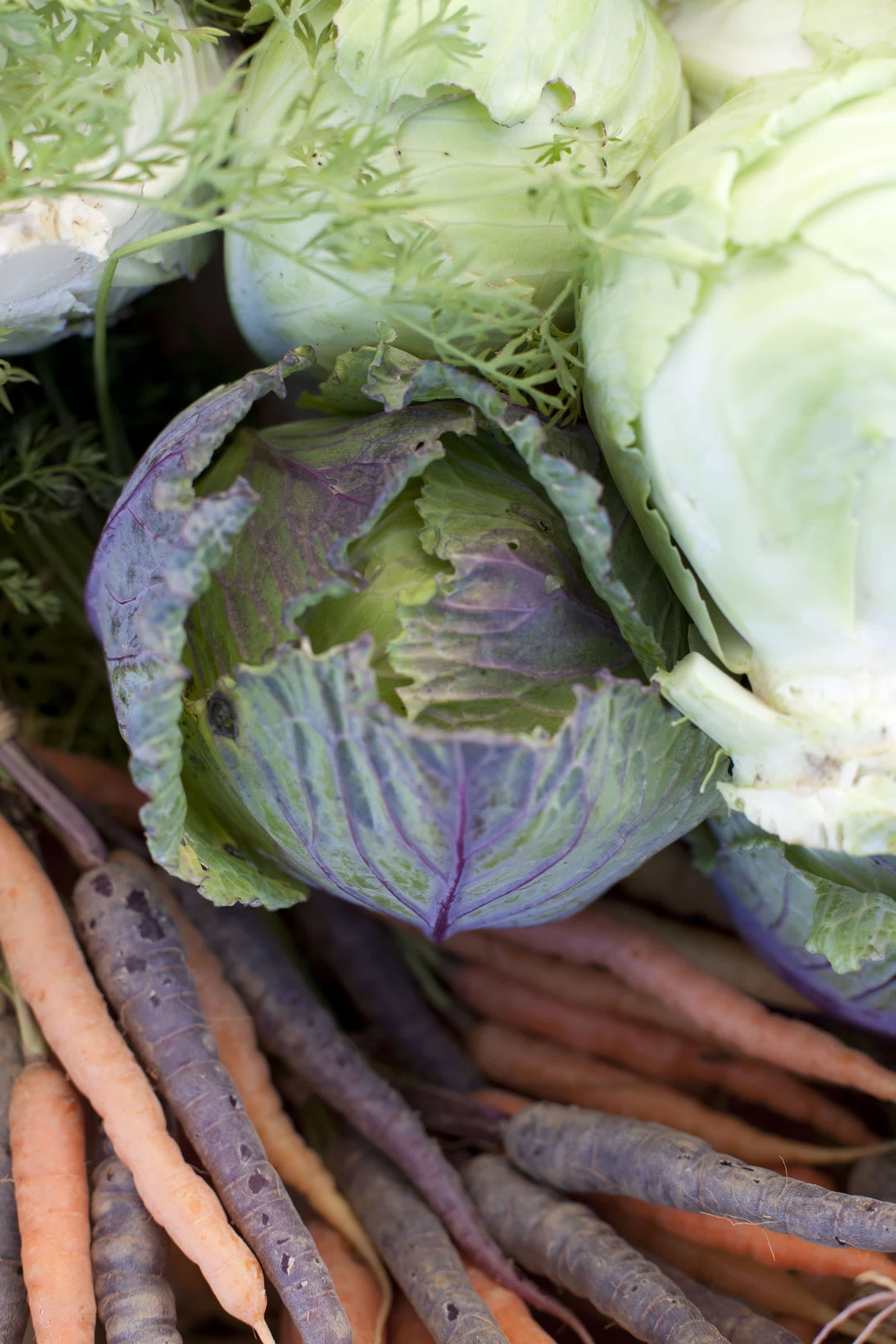 How Produce Gets from the Farm to a Farmers Market: gallery image 3