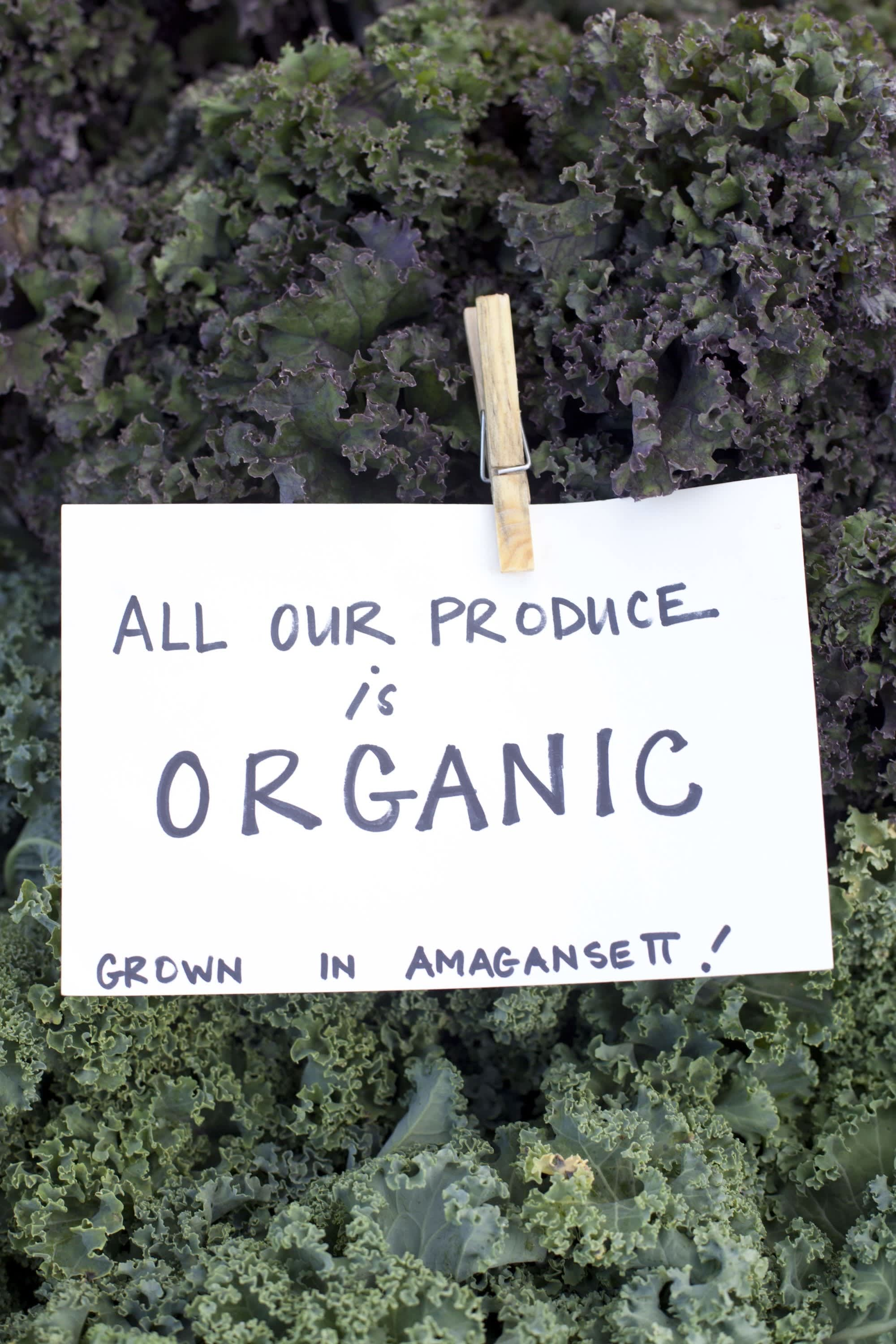 How Produce Gets from the Farm to a Farmers Market: gallery image 15