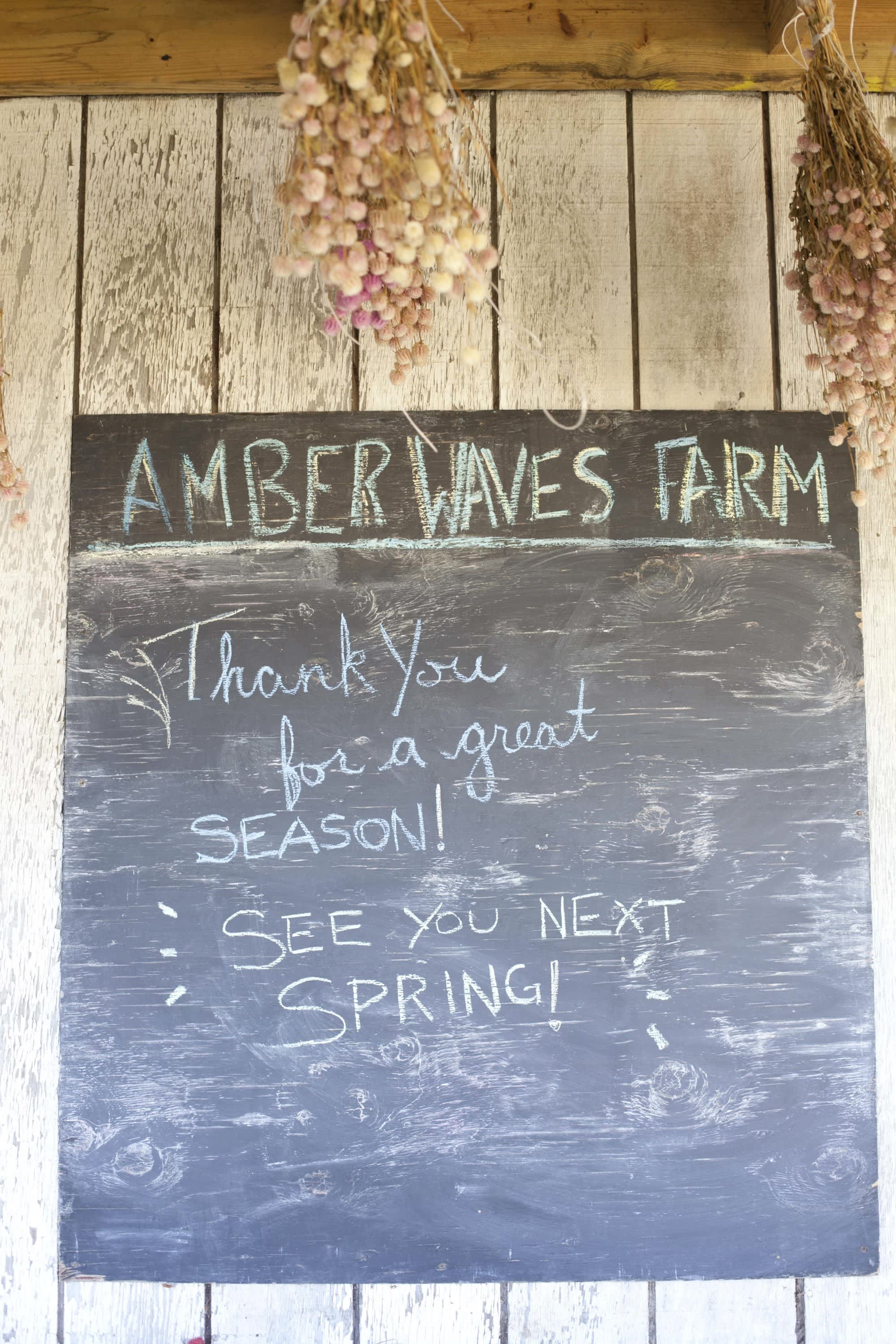 How the Farm Puts Itself to Bed: The Last Day of the Season at Amber Waves Farm: gallery image 26