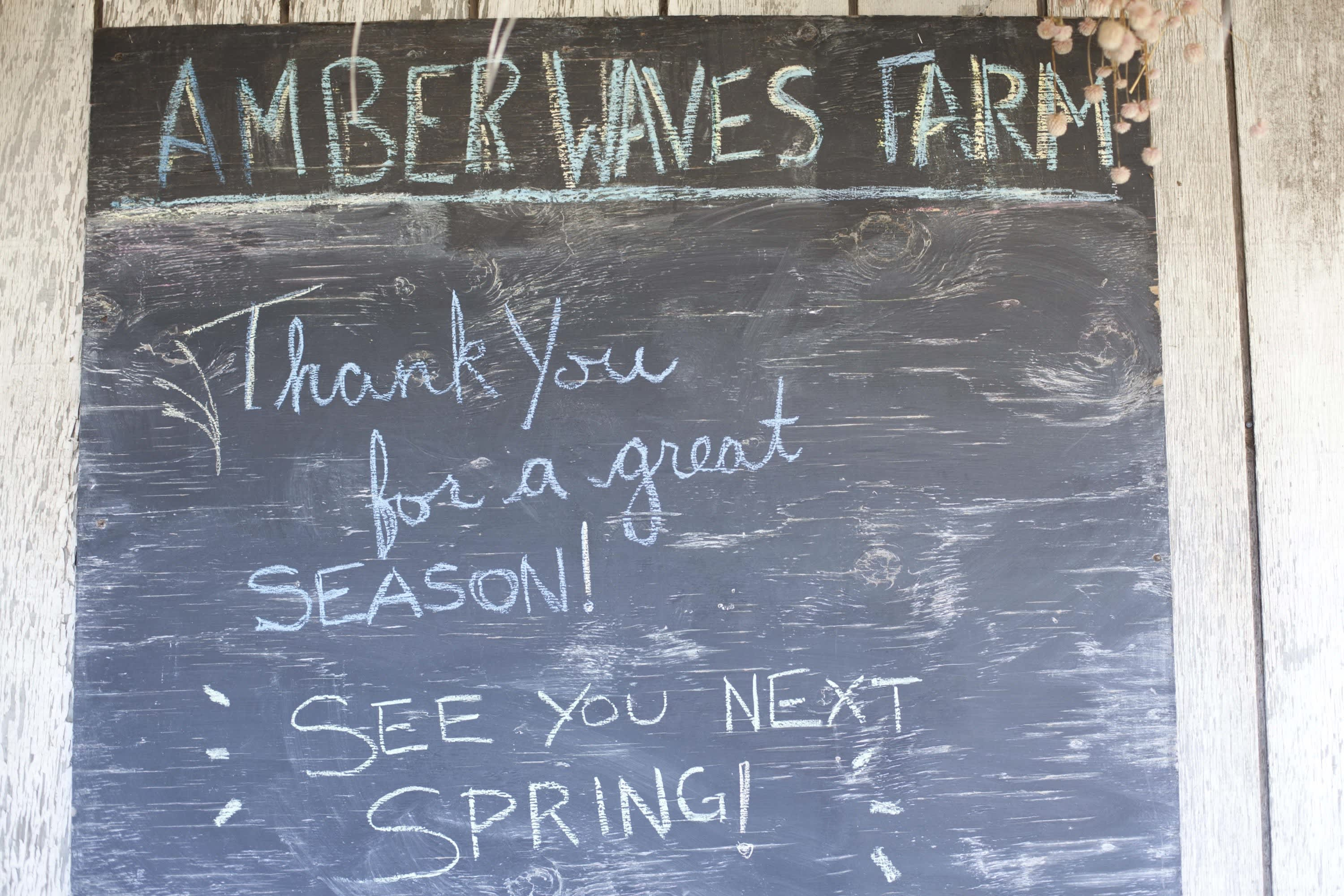 How the Farm Puts Itself to Bed: The Last Day of the Season at Amber Waves Farm: gallery image 27