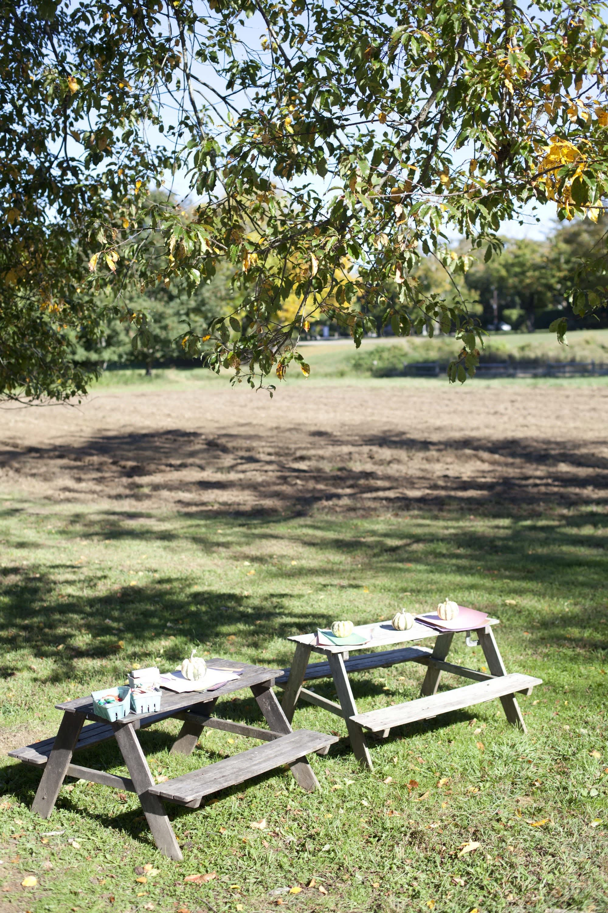 How Farmers Celebrate the End of a Season: The OktoberFeast Potluck at Amber Waves Farm: gallery image 30