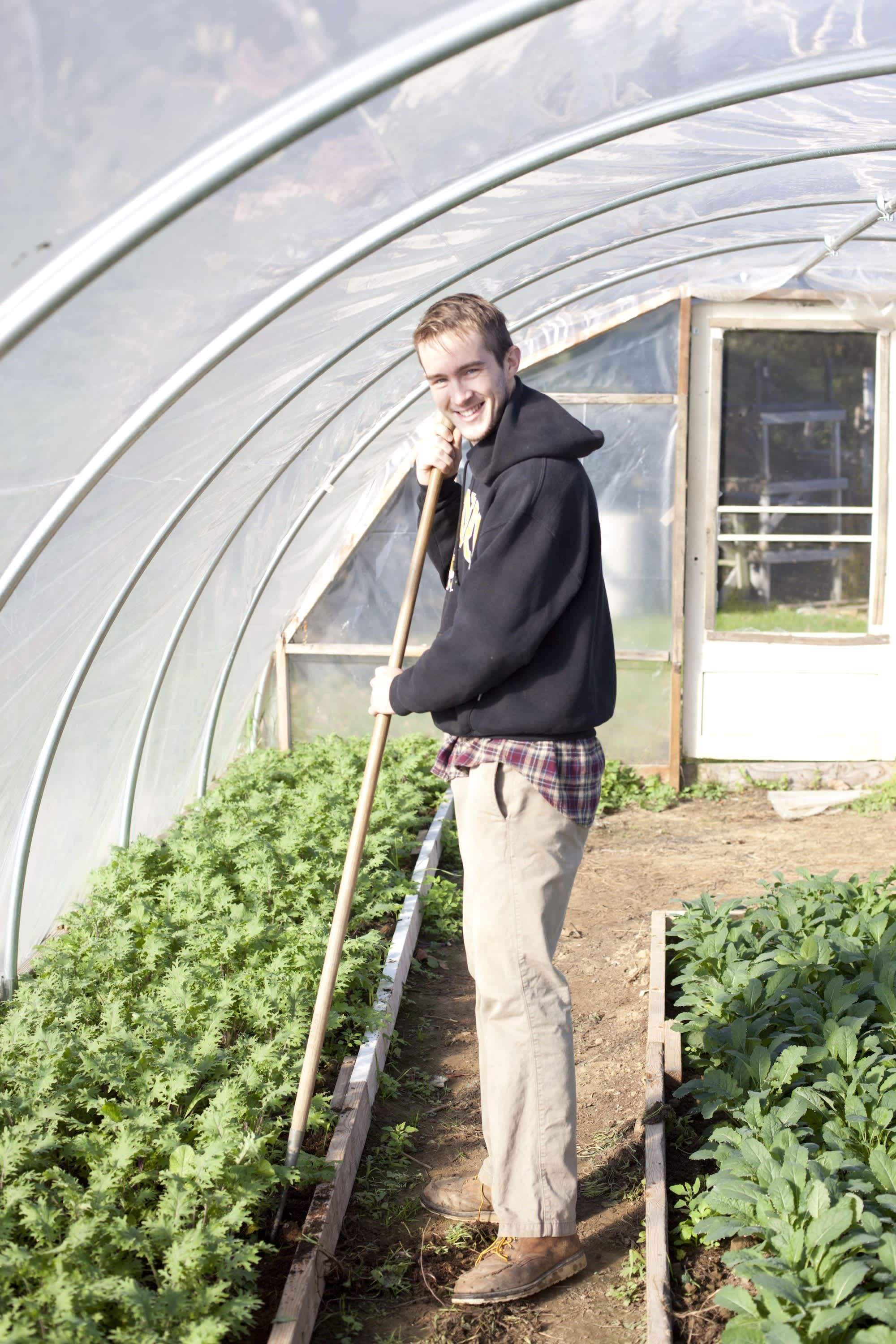 How the Farm Puts Itself to Bed: The Last Day of the Season at Amber Waves Farm: gallery image 3